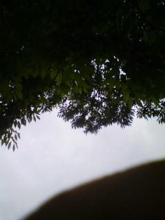 雨も降ったけど