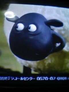 NHKの字幕